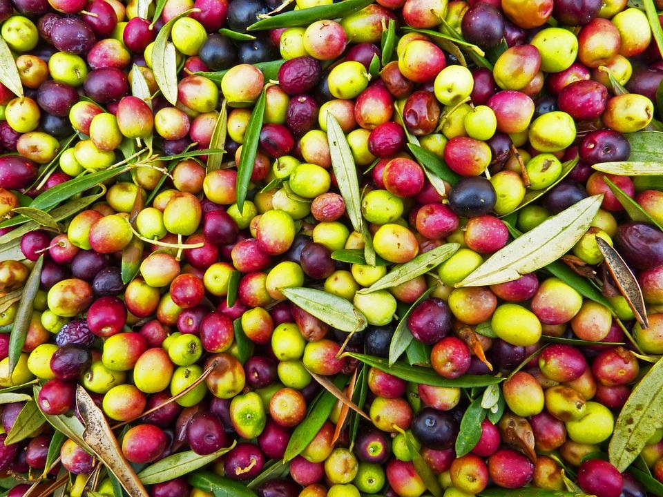 olives-1119500_960_720